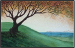 One Hill Tree