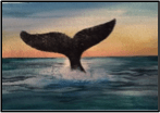 Whale's Tale!