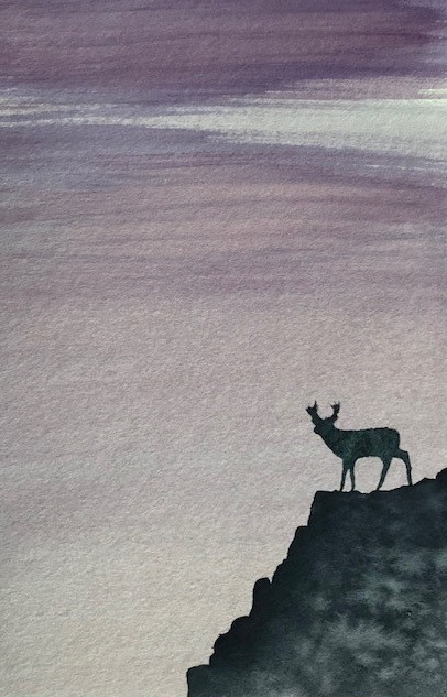 Class 67 Deer on the Cliff